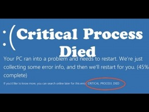 The CRITICAL_PROCESS_DIED