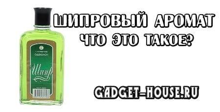 шипровый аромат – что это такое простыми словами, примеры
